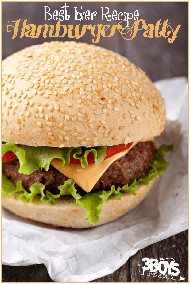 Best Ever Easy Hamburger Patty – 3 Boys and a Dog