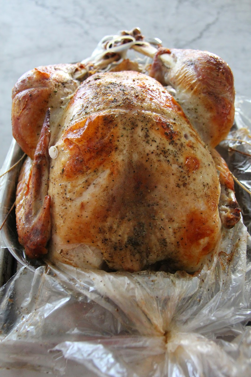 A Bountiful Kitchen: How to Roast a Turkey in a Bag