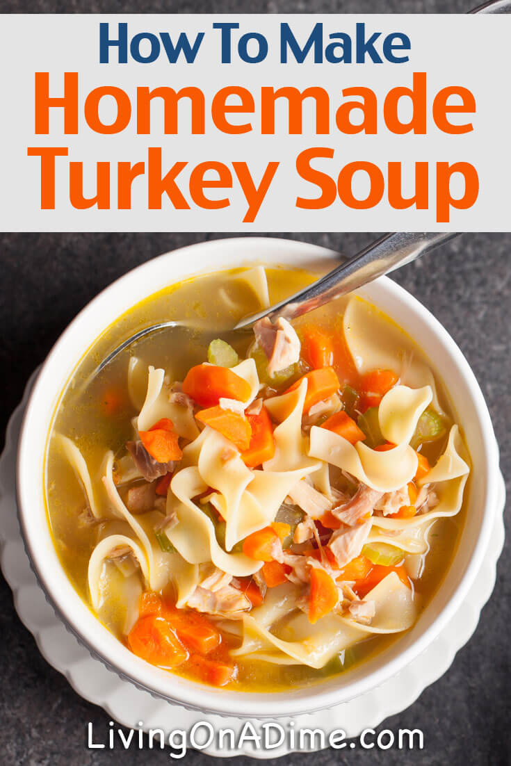 Homemade Chicken And Turkey Soup Recipes - Living on a Dime