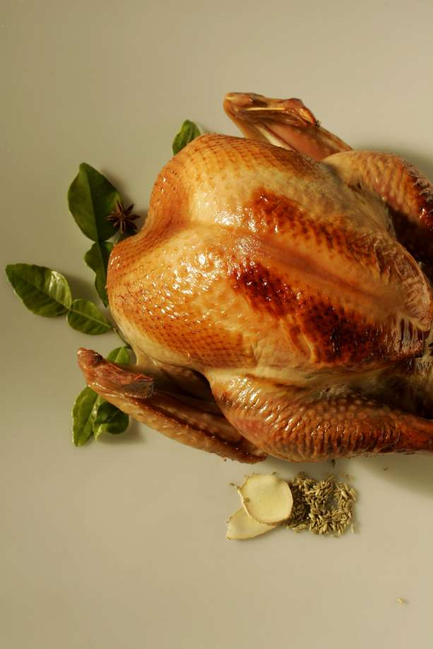 Talking convection-oven turkey - SFGate
