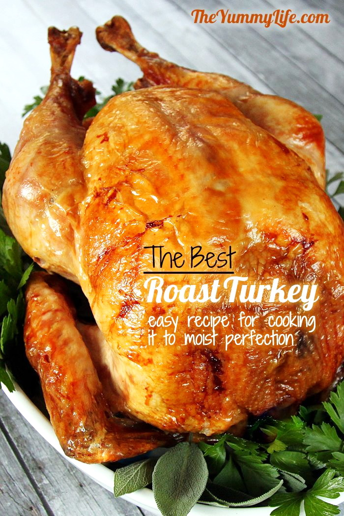 Top 10 Simple Turkey Recipes – Best Easy Thanksgiving ...