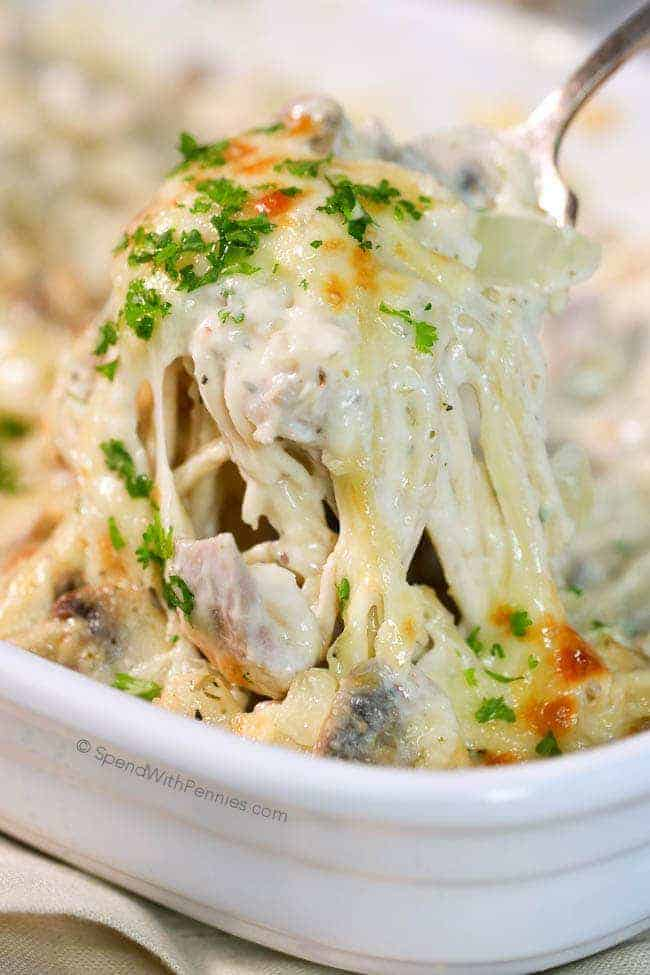 Turkey Tetrazzini - Spend With Pennies