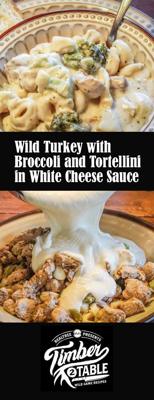 Wild Turkey with Broccoli and Tortellini in White Cheese ...